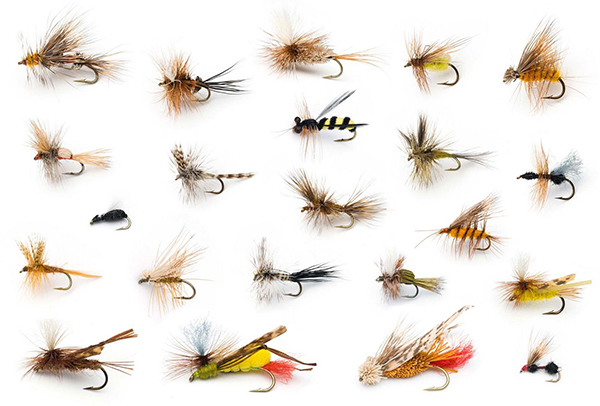 How To Saltwater Fly Fish